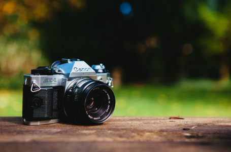 Learn Digital Photography – My Top Ten Tips For Beginners